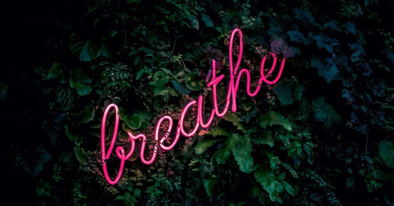 pink neon breathe sign on green leaves