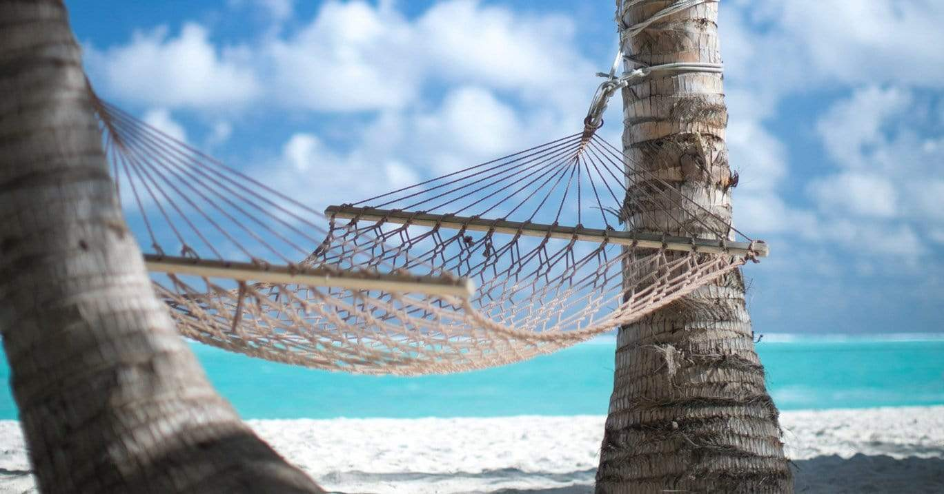 White rope hammock hangs between two tropical trees next to a crystal blue ocean.