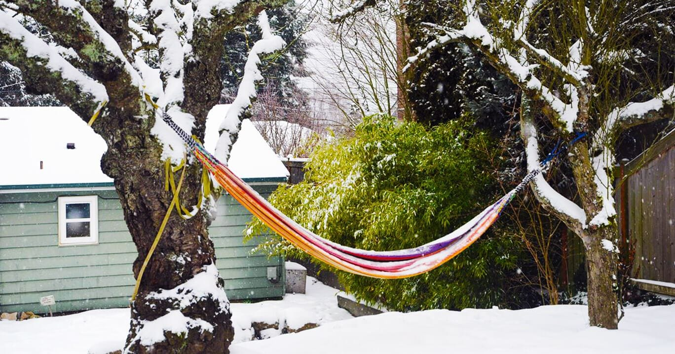 Proper Winter Storage for Hammock Protection and Longevity