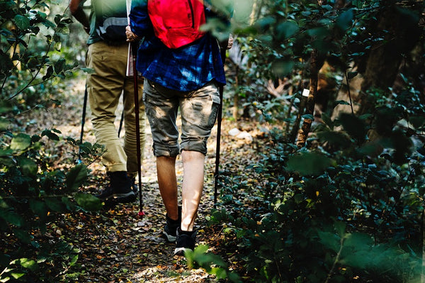 two adventurers hiking and backpacking through the forest