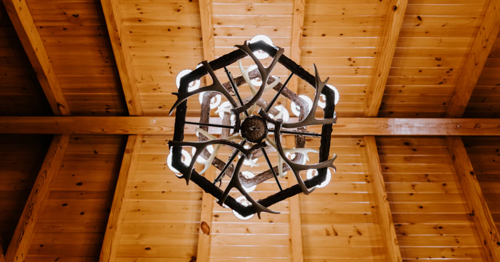 a bottom-up view of an antler chandelier