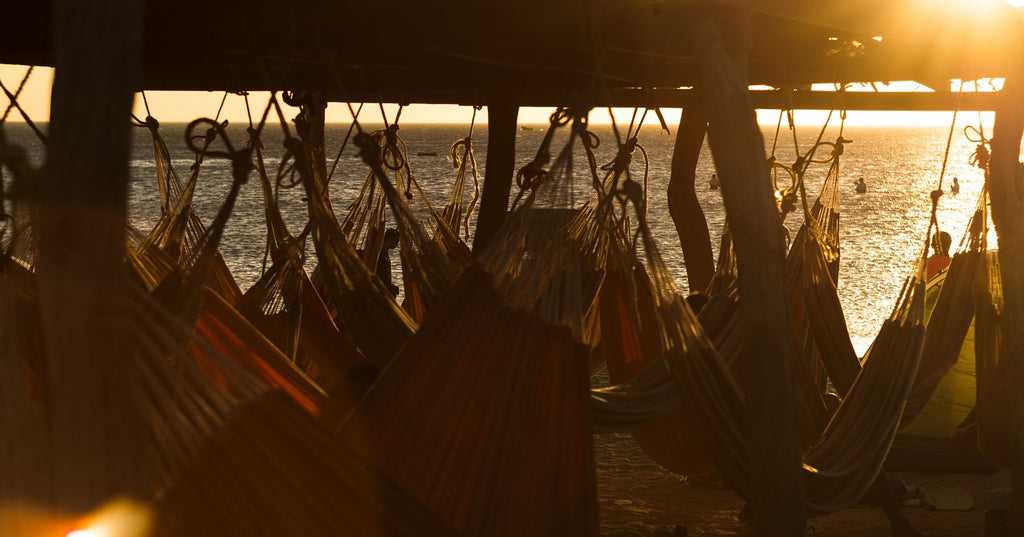 dozens of hammocks hang to the dock using knots