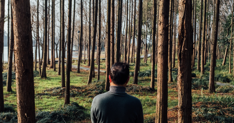 Man sitting in a forest