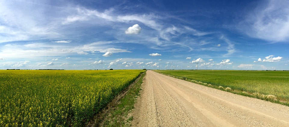Saskatchewan's prairies stretch out on either side of a gravel road beneath a blue sky filled with beautiful clouds.