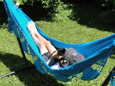 Nicaraguan Hammock with Stand | Hammock Universe Canada blue celeste with dog