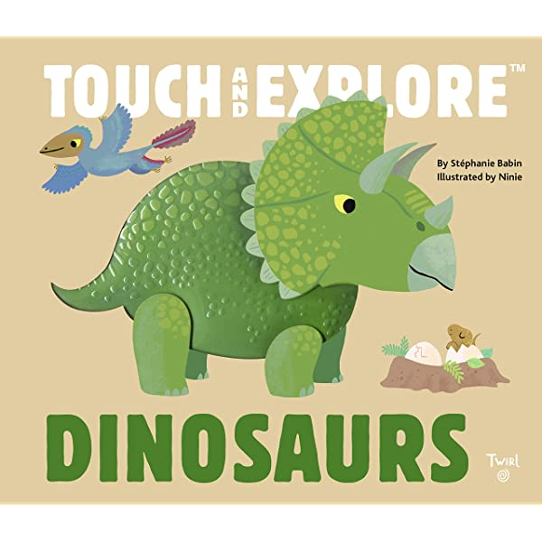 Touch and Explore- DINO