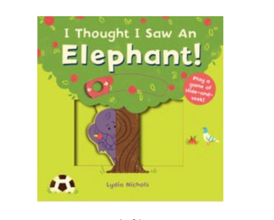 Thought I Saw an Elephant board book