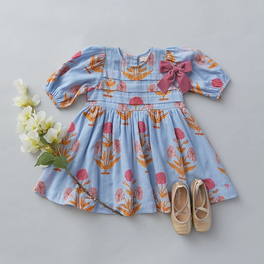 Pink Chicken Evelyn Dress- Blue Bell