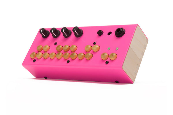 The Bolsa Bass by Critter and Guitari