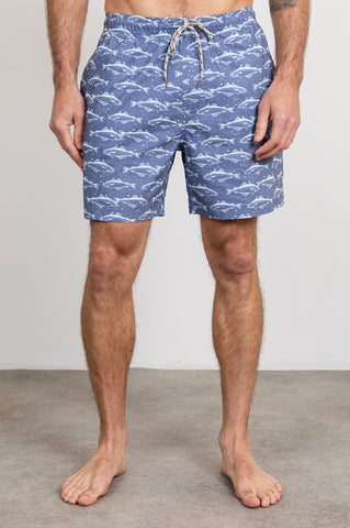 mens cotton polyester blend swim short, blue, fish, river school print