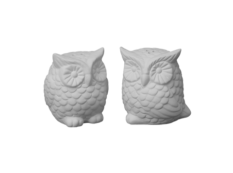 Hoot Owl Salt & Pepper Shaker