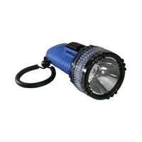 Abyss High Intensity LED Torch - Waterproof to 100m
