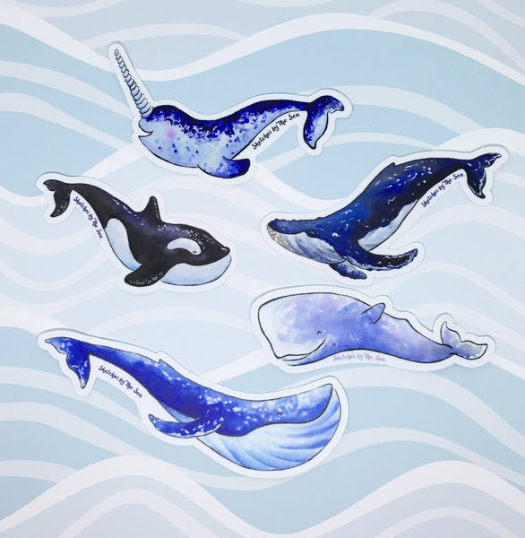 Orca Whale Sticker ST812