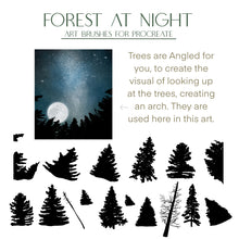 Load image into Gallery viewer, Forest At Night - Art & Stamp brushes for Procreate