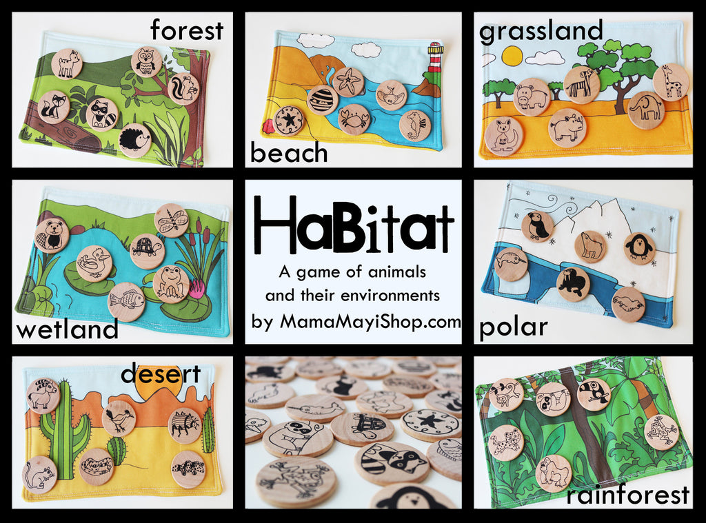Learning Toy - Habitat