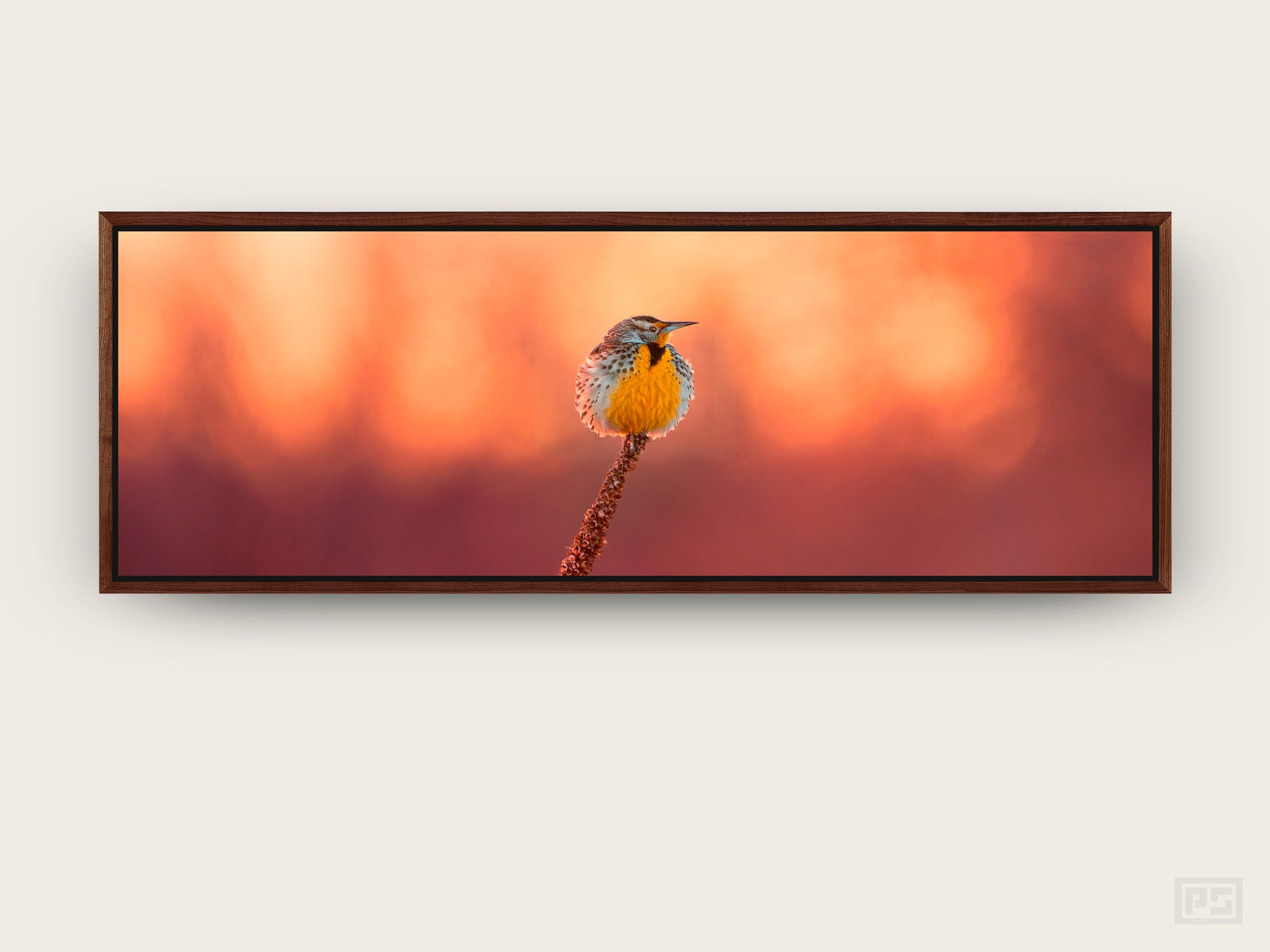 "Framed Canvas Print ""The Meadowlark"""