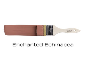 Enchanted Echinacea - Osseo Savitt Paint