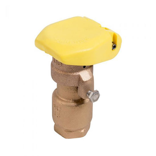 Rain Bird - 33DRC - 3/4'' Quick Coupling Valve w/ 2-Piece Body