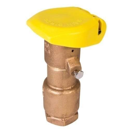 Rain Bird - 44RC - 1 in. Quick Coupling Valve with 2-Piece Body
