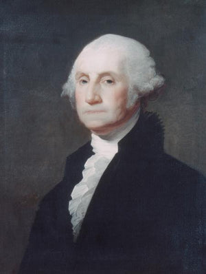 George Washington by Gilbert Stuart 18x24 Poster