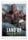 12 Week Bulk - eBook