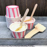 Bulk Mini Wooden Spoons -Eco Friendly Disposable Biodegradable - 3.5 Inches -