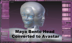 Maya Bento Head Converted to Avastar - Tutorial