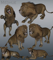 Mill Big Cat Lion Animation Set