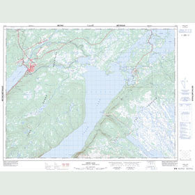 Canadian Topo Map - Deer Lake - Map 012H03
