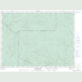 Canadian Topo Map - Wild Goose Lake - Map 021N16