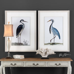 Shore Birds Framed Prints S/2