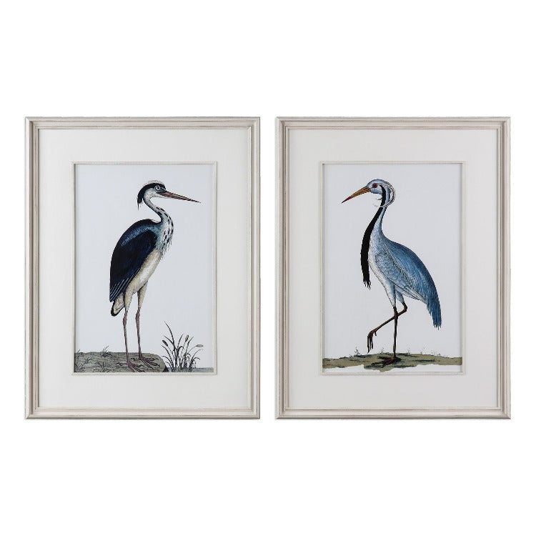 Shore Birds Framed Prints, S/2 - taylor ray decor
