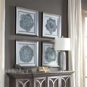 Natural Beauties Framed Botanical Prints, S/4 - taylor ray decor