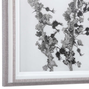 Contemporary Botanicals Framed Prints, S/12 - taylor ray decor