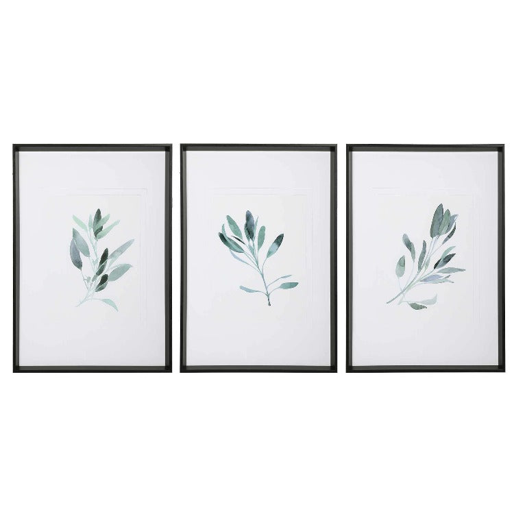 Simple Sage Framed Prints, S/3 - taylor ray decor
