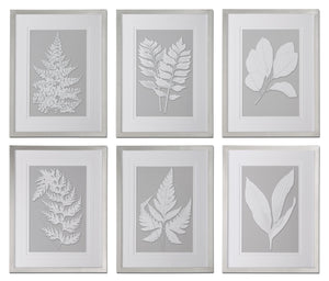 Moonlight Ferns Framed Art, S/6