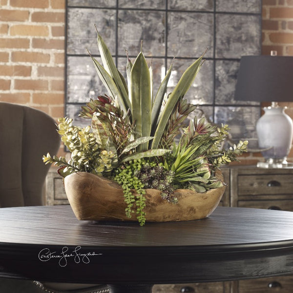 Salar Succulents In Teak Bowl