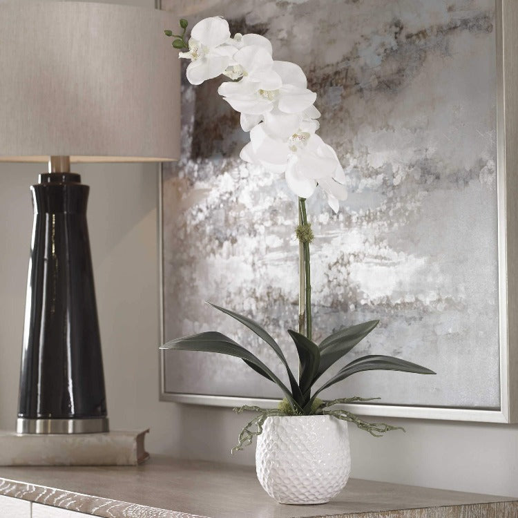 Cami Orchid - taylor ray decor