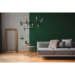 Springfield Black Iron Chandelier - taylor ray decor