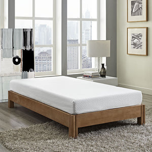 "Aveline 6"" Twin Mattress - taylor ray decor"