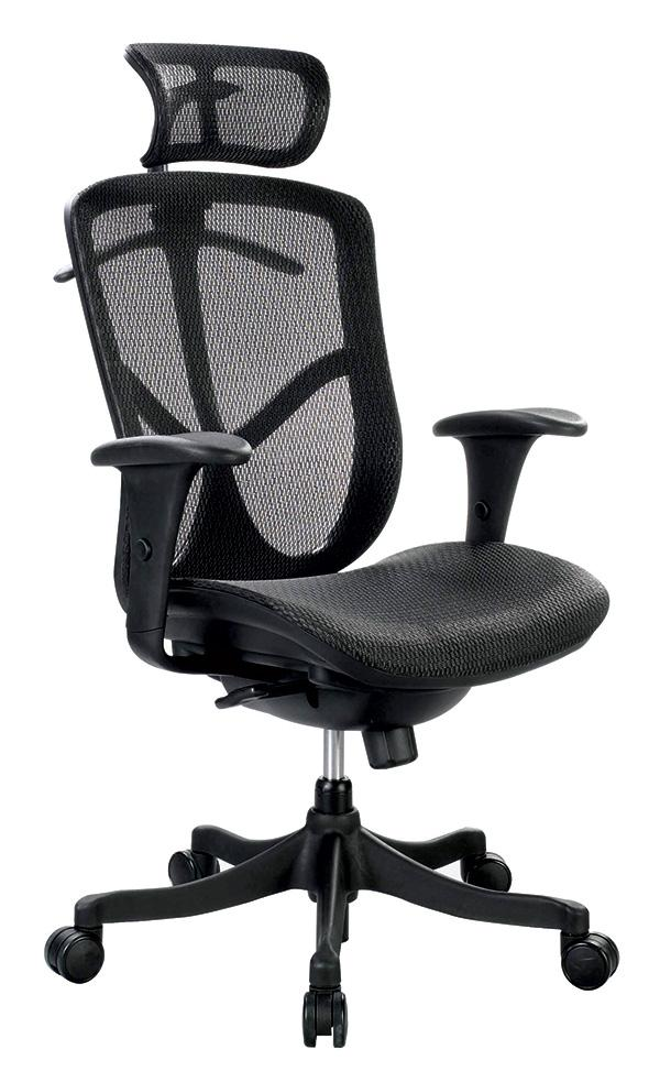 Fuzion Basic Mesh High Back Executive Chair - taylor ray decor