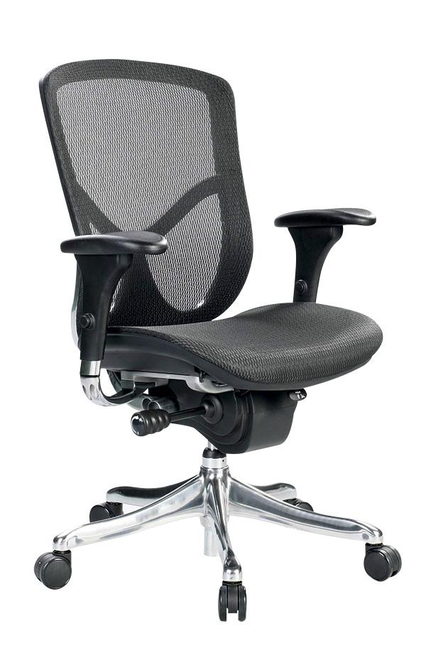 Fuzion Luxury Mesh Mid-Back Executive Chair - taylor ray decor