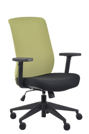 Gene Mesh / Fabric Back Executive Chair in Lime Fabric