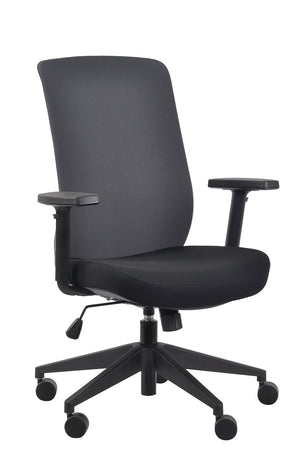 Gene Mesh / Fabric Back Executive Chair in Charcoal Fabric