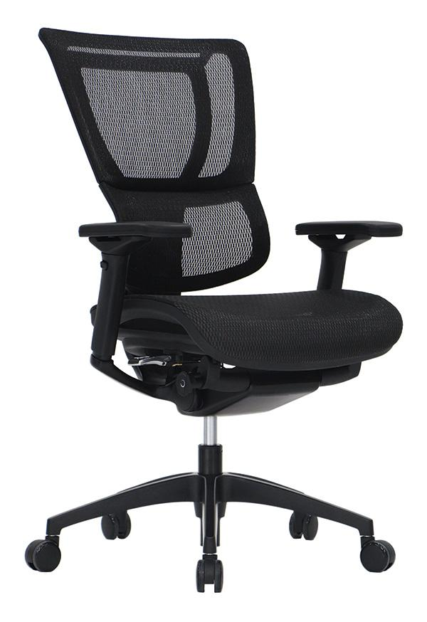 iOO Mesh Ergonomic Executive Chair - taylor ray decor