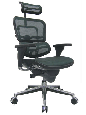 ErgoHuman Green Mesh High Back Executive Chair