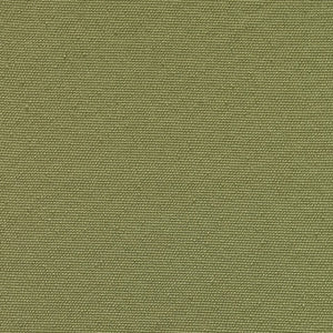 Medium Pistachio Polyester Fabric