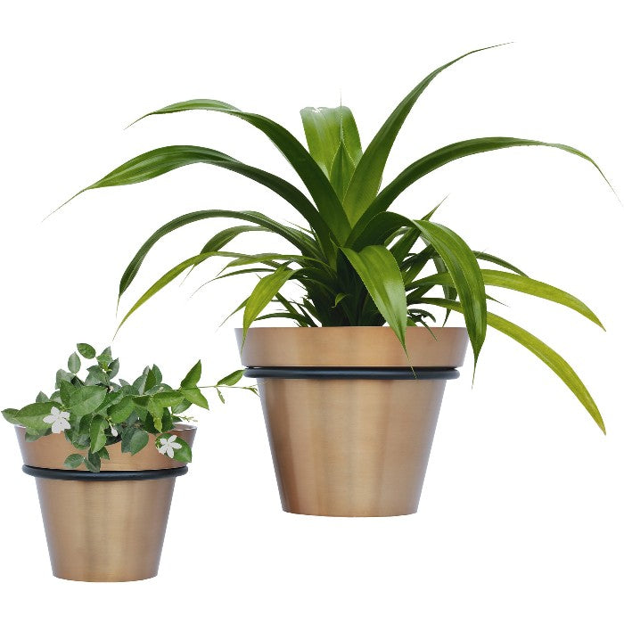 Roni Outdoor Planters, Set of 2 - taylor ray decor