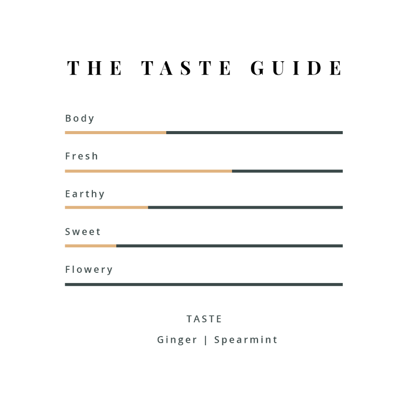 Ginger mint Taste guide we b tea