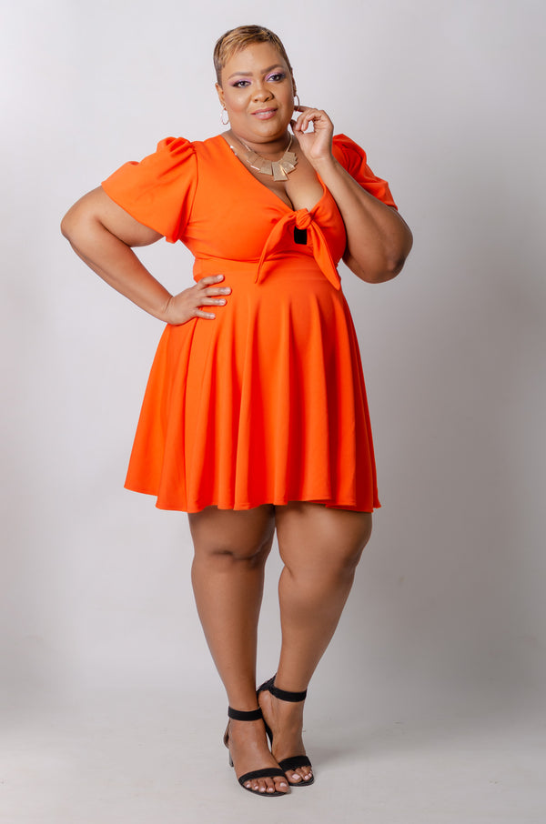 Kaelan Skater Dress - Orange